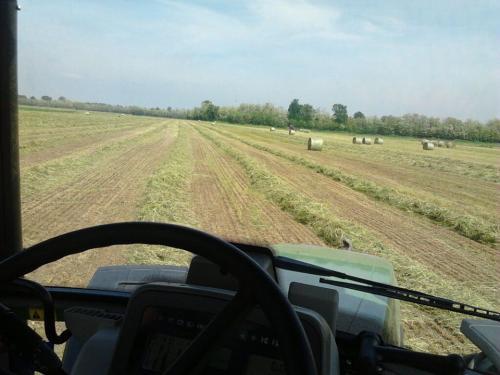 azienda_agricola_cascina_la_fontana14
